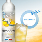 GREY GOOSE Vodka Introduces Summer Connections www.facebook.com/GREYGOOSE.  (PRNewsFoto/GREY GOOSE(R) Vodka)