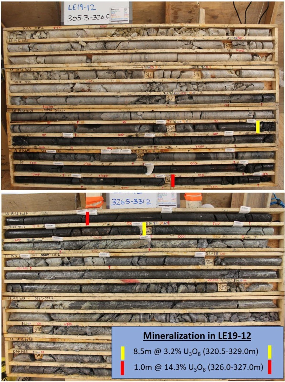 Figure 5 – Core Photos of Mineralization in Drill Hole LE19-12