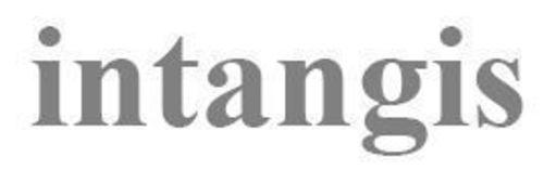 Intangis logo (PRNewsFoto/Intangis Holdings)