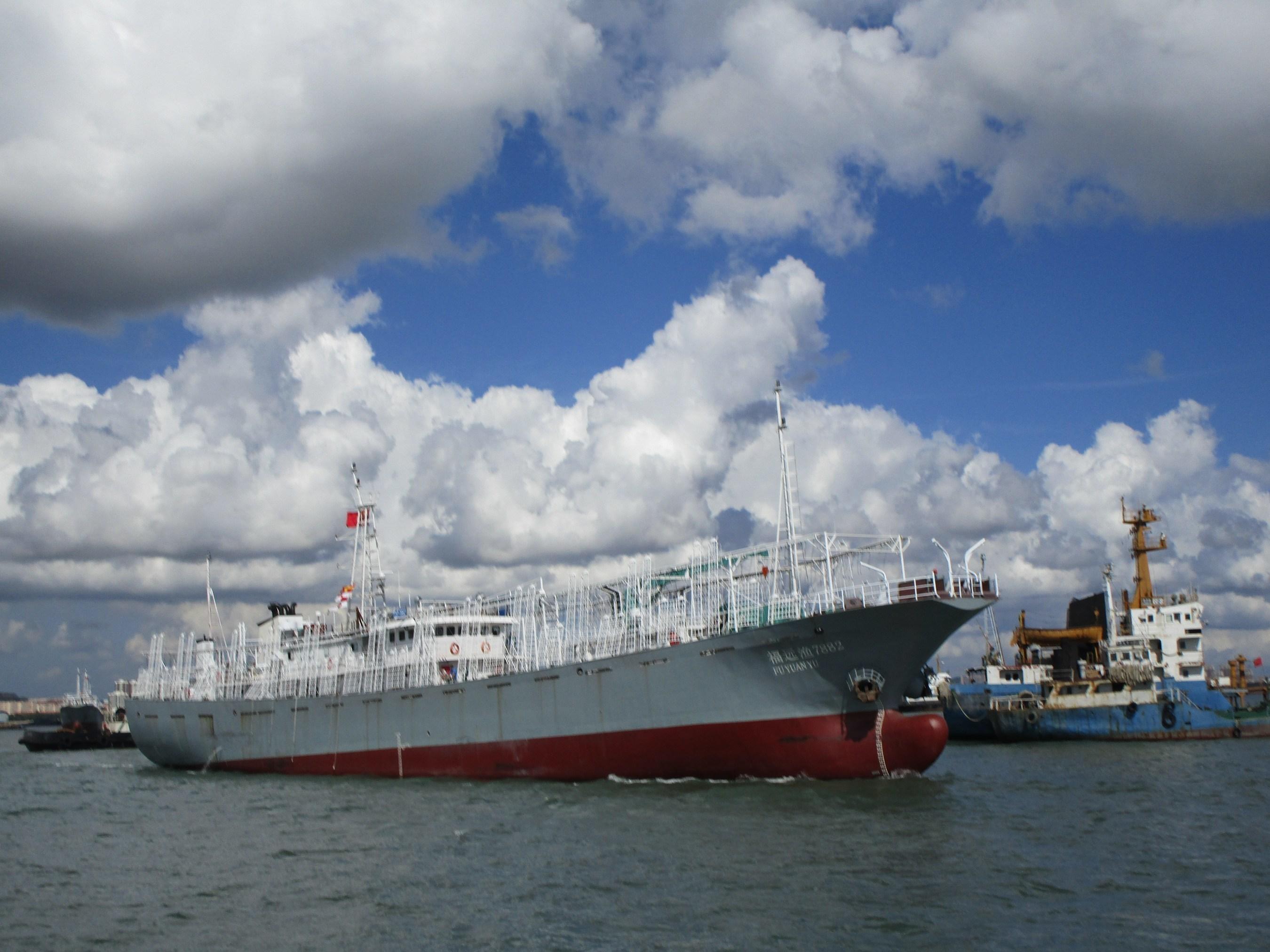 Pingtan's squid jigging vessel