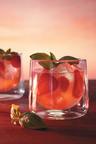 GREY GOOSE(R) Vodka Elevates Summer with Signature Punch.  (PRNewsFoto/GREY GOOSE(R) Vodka)