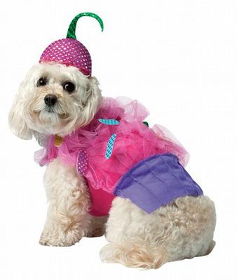 Dog Costume Cup Cake.  (PRNewsFoto/ZoePetSupply.com)