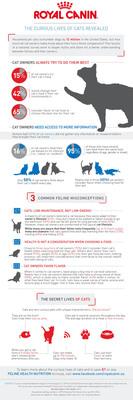 The Curious Lives of Cats Revealed. (PRNewsFoto/Royal Canin USA) (PRNewsFoto/ROYAL CANIN USA)