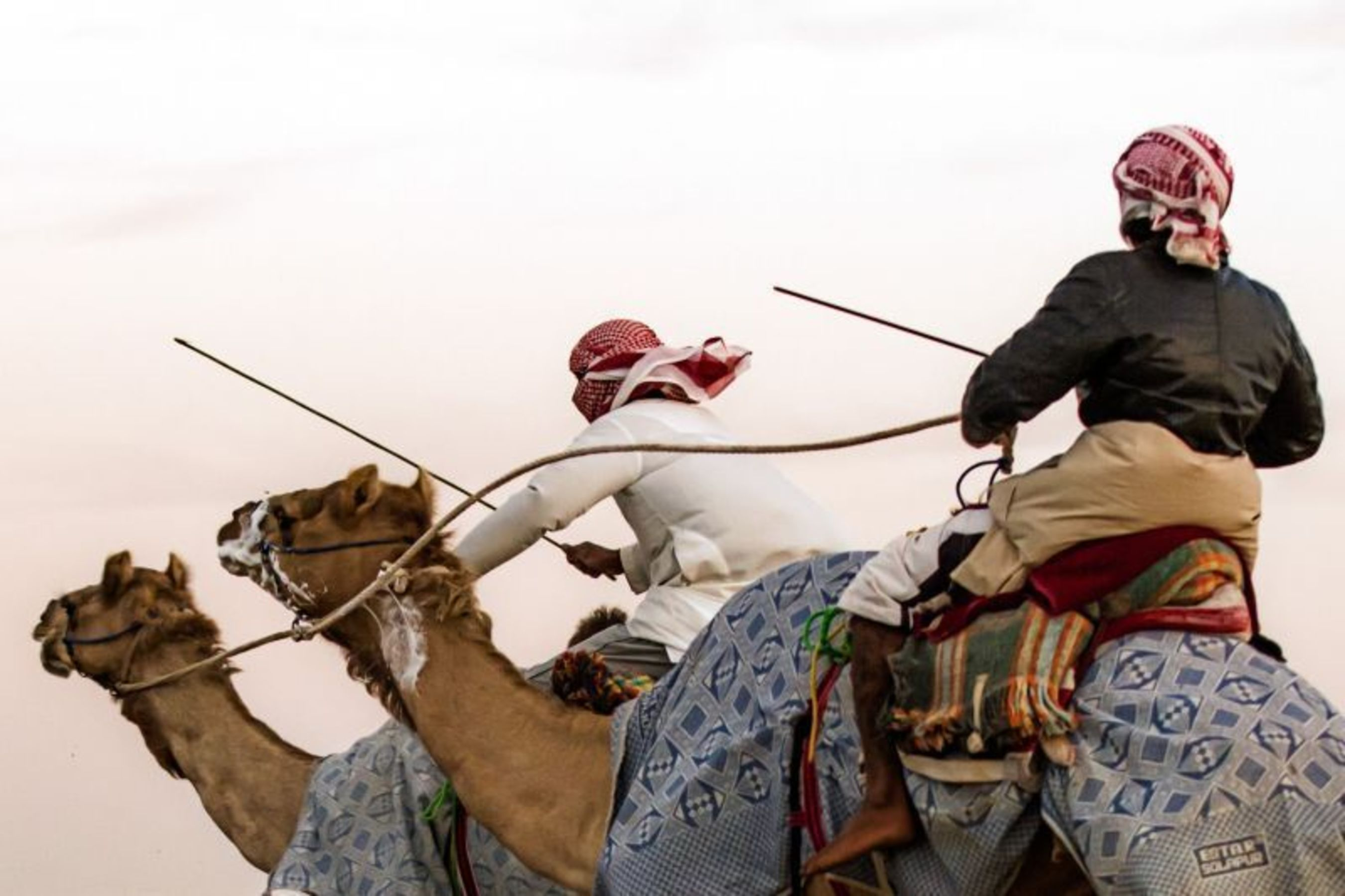 Camel racing is a sport that has been absorbed into the cultural history of the UAE (PRNewsFoto/vision.ae)