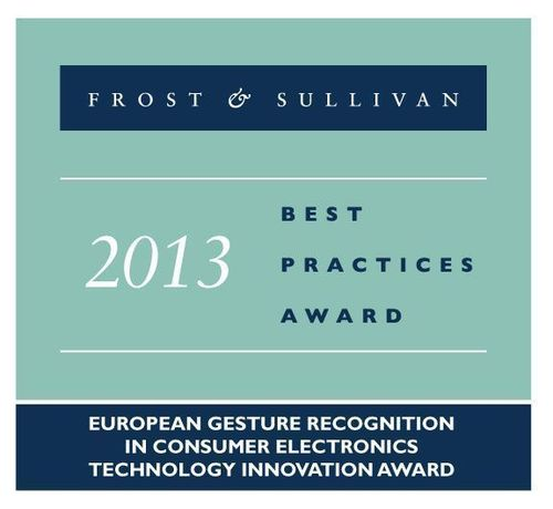 Frost & Sullivan 2013 Best Practices Award