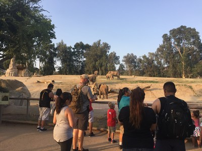 Injured veterans and their families checked out the elephant exhibit during a recent Wounded Warrior Project outing at the San Diego Zoo Safari Park.
