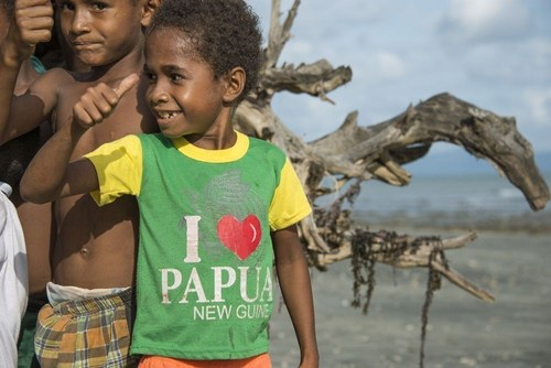 Brother International Europe is supporting Cool Earth's new project in Papua New Guinea. (PRNewsFoto/Brother International Europe) (PRNewsFoto/Brother International Europe)