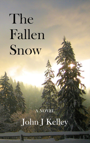 The Fallen Snow, by DC author John J Kelley, explores the difficult return of a young soldier to rural Virginia  ...