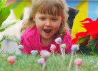 Live The Magic of Spring and plant a Dum Dums Lollipop Garden with Your Child! Photos, videos, directions for building a unique Dum Dums Garden and all types of gardening tips will be available online; visit http://www.dumdumpops.com/media for more information.