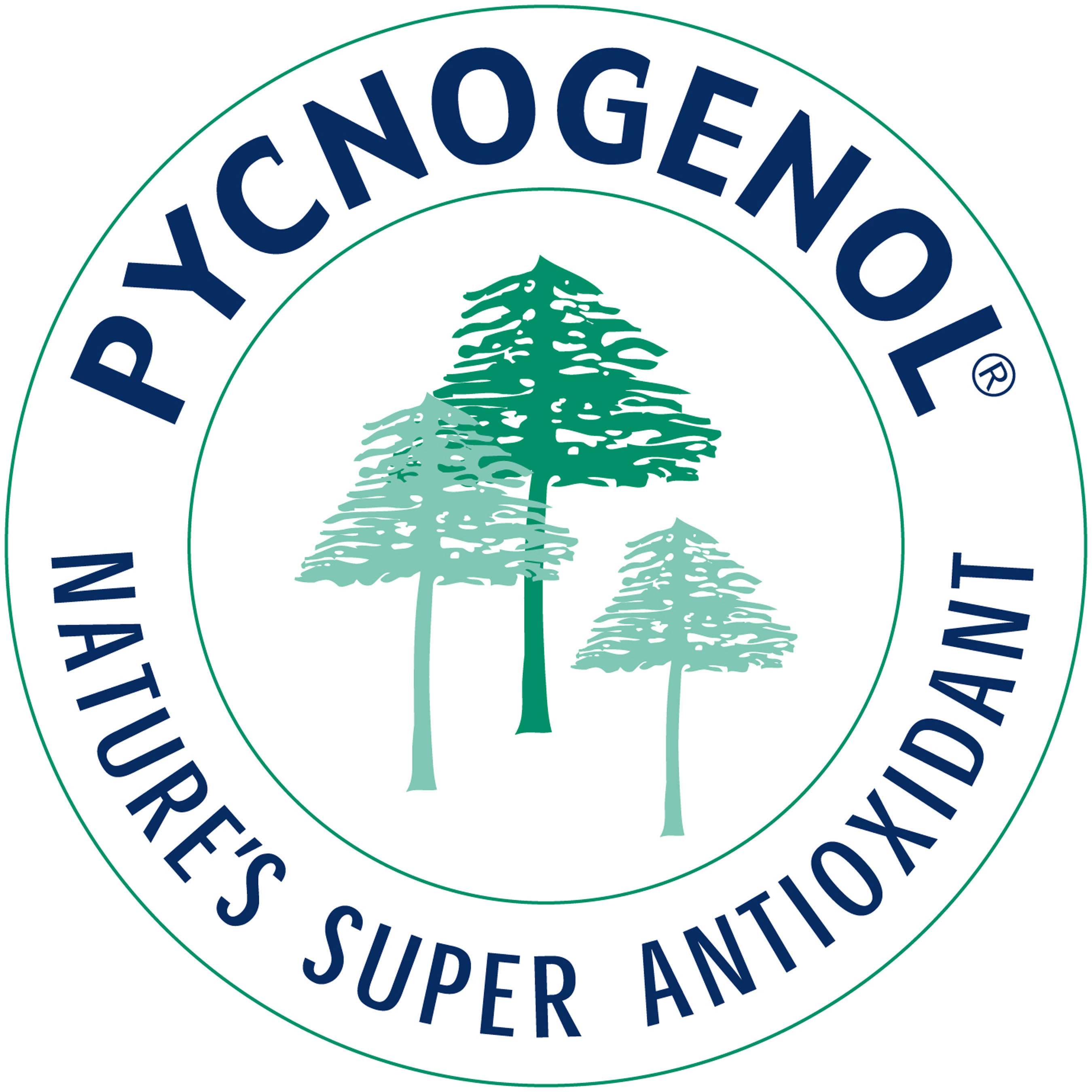 Pycnogenol(R) is a natural plant extract originating from the bark of the maritime pine that grows along the ...