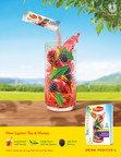 Lipton® Unveils New Campaign With Grammy Award-Winning Trio Lady Antebellum to Own the