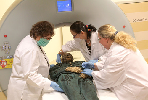 Hungarian Mummy on Loan to Mummies of the World Exhibition Undergoes Non-Invasive Scan at