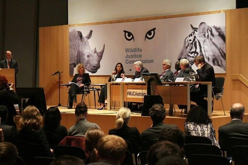 Panel questioning Pauline Verheij at the #WJCVietnam Public Hearing (PRNewsFoto/Wildlife Justice Commission)