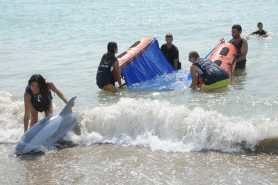 Dolphin Rescue in Water