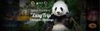 Global Travellers - Chengdu Challenge: Many travelers come to meet in Chengdu