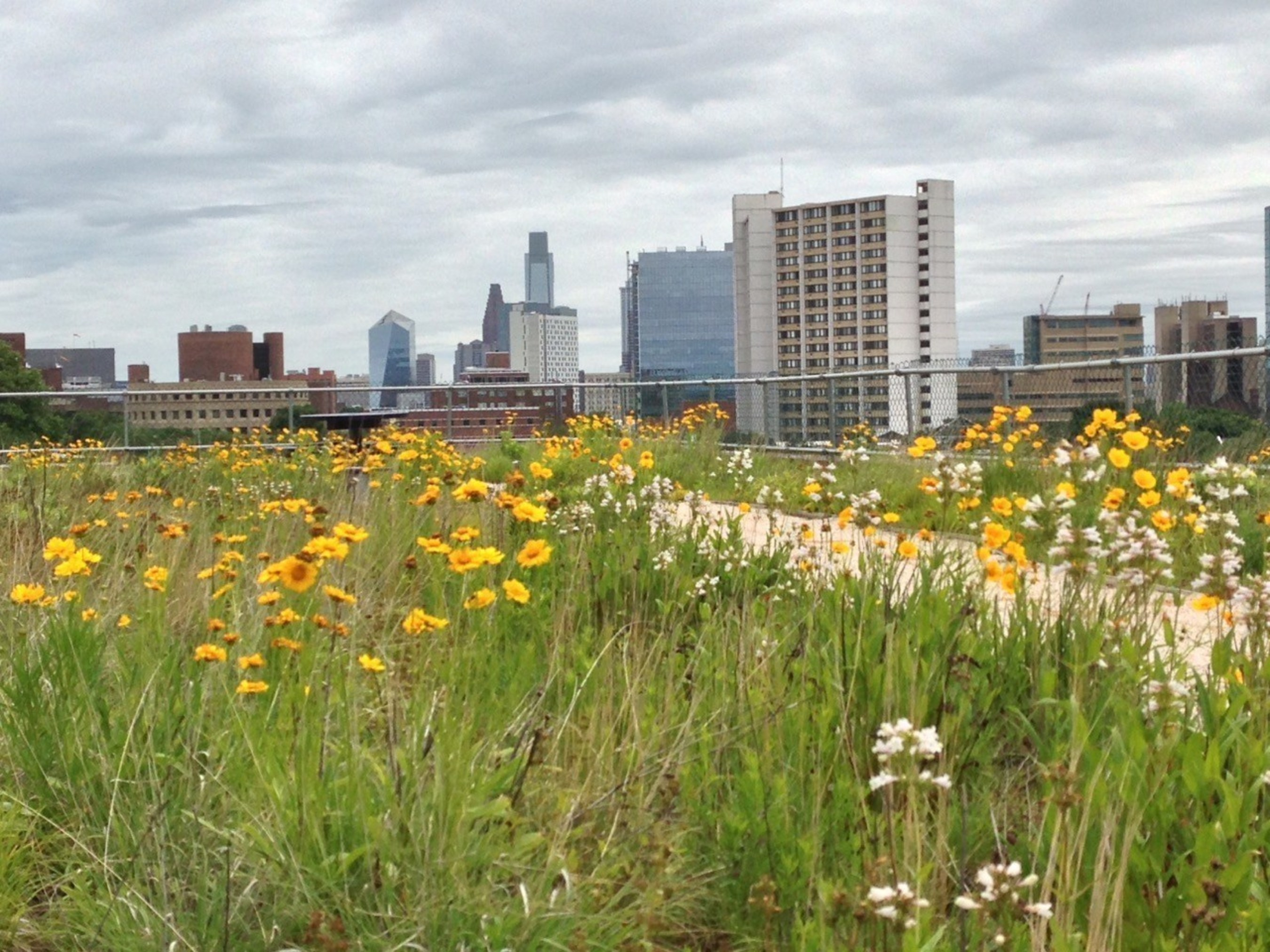 2.0 University Place was built with the highest standards for environmental sustainability, providing a cleaner, healthier work environment and lower operating and maintenance costs.  The rooftop garden, which overlooks the Philadelphia skyline, improves air quality, conserves energy and reduces storm water runoff.
