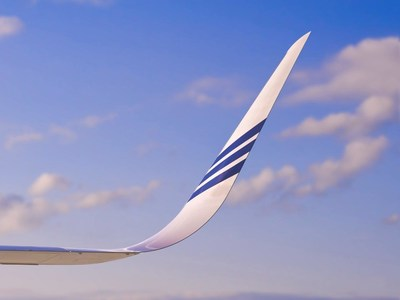 API Fuel Saving Blended Winglet