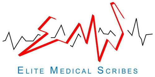 Elite Medical Scribes will display at ACEP13's innovatED, a custom-designed, life-sized replica of an ...