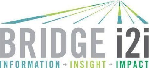 Bridge i2i Logo