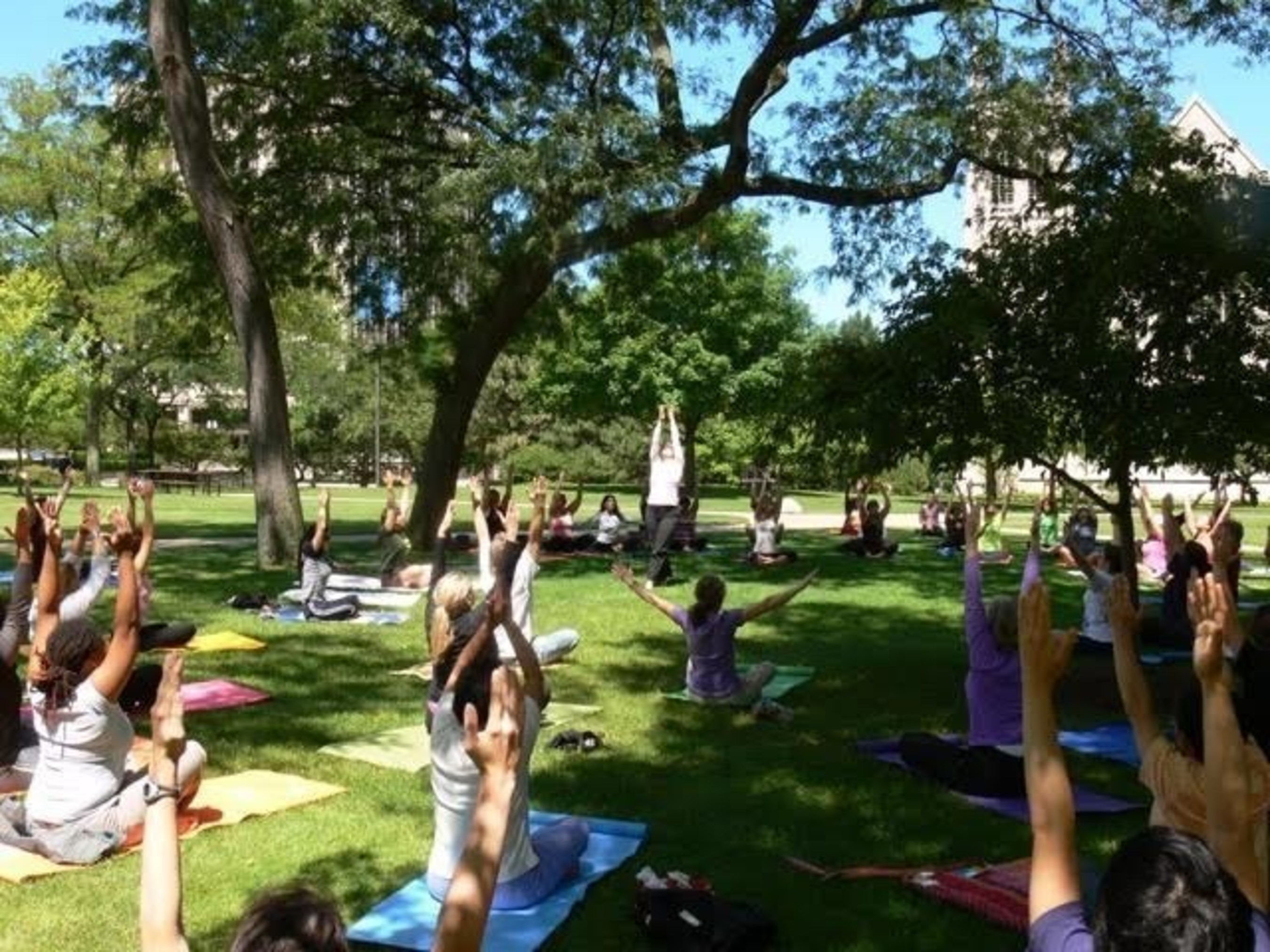 Pink Lotus Yoga Village at Cleveland World Festival to host free yoga classes on Sunday, August 2, starting at 1 p.m.