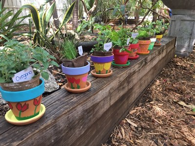 Bankers Healthcare Group provided all of the necessary materials for the children to decorate small pots and create their own miniature herb gardens.