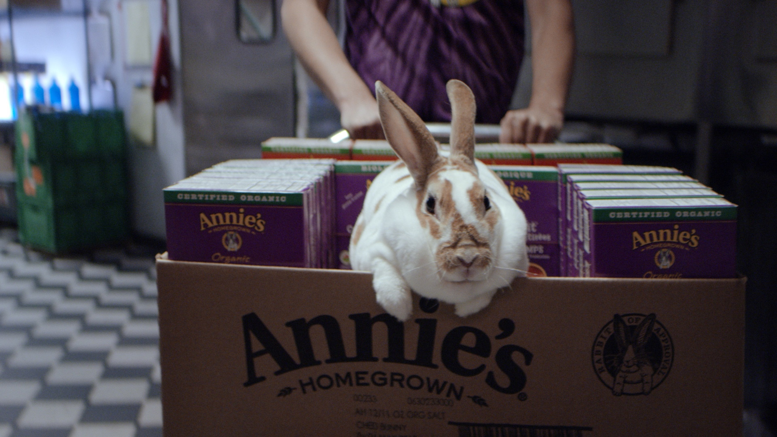 """Annie's, Inc. - """"Organic for Everybunny(TM)"""""""