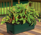 EarthBox® Introduces Container Garden Kit for Small Spaces