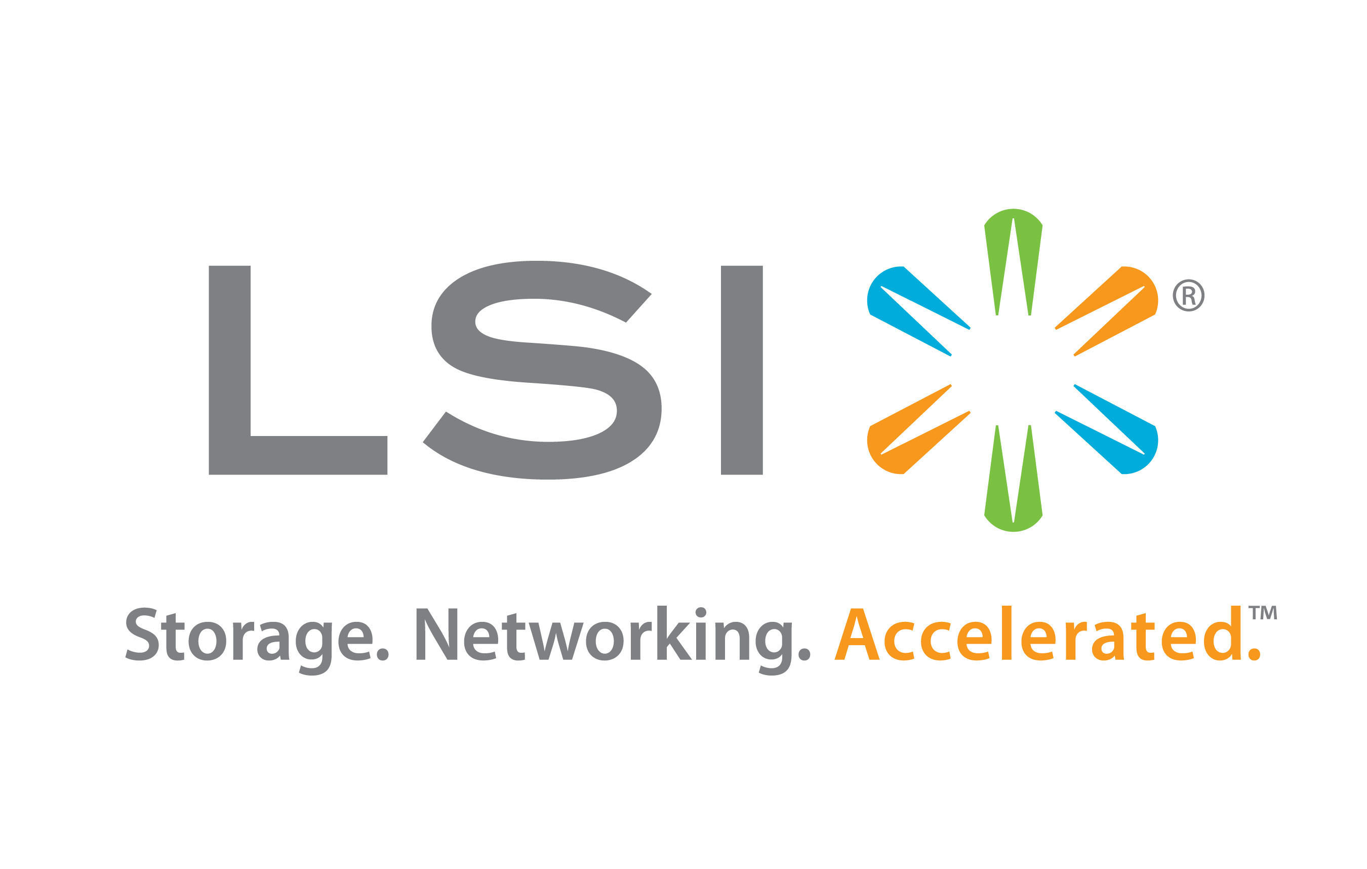 LSI Logo. (PRNewsFoto/LSI Corporation) (PRNewsFoto/)
