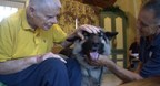 Nikita is a pet therapy dog who visits Heartland Hospice patients with her handler, Dave Benhoff.