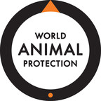 World Animal Protection Commends McDonald's on Cage-Free Commitment