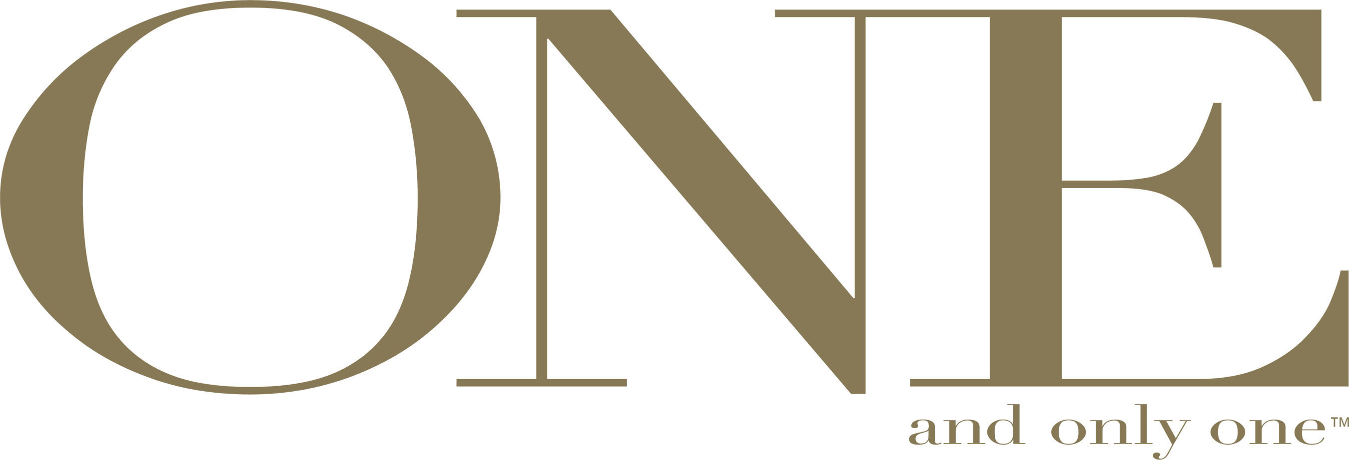 The One and Only One Logo