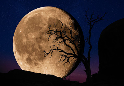 Bella Luna by Peter Lik.  (PRNewsFoto/LIK USA)