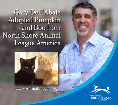 North Shore Animal League America Acknowledges June as Adopt-A-Shelter-Cat Month With Spokesperson