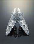 Objet 3D Printed Doppelganger – by Neri Oxman