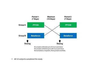 PF530-101: Study Design