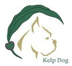 Kelp Dog Launches New, Holistic Healing Solution for Dogs