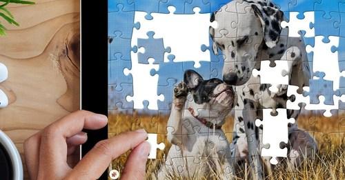 Puzzle.Plus - Classic jigsaw puzzle in your hands (PRNewsFoto/Puzzle.Plus)