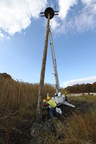 PSEG Long Island replaces a damaged osprey pole and platform in Nissequogue River State Park, Kings Park, NY. The new structure will provide a safe nesting area for the osprey away from vital electrical infrastructure, helping PSEG Long Island maintain strong electric service reliability.