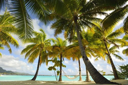 STOPOVER IN PARADISE THIS SUMMER: AIR TAHITI NUI OFFERS THREE FREE NIGHTS IN TAHITI.  (PRNewsFoto/Air Tahiti Nui)