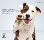 The only way to find out how amazing shelter pets really are...is to meet one.  (PRNewsFoto/Ad Council)