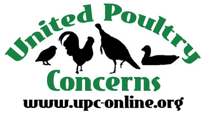 United Poultry Concerns is a nonprofit organization dedicated to the compassionate and respectful treatment of chickens, turkeys, ducks and other domestic fowl. We hold that the treatment of these birds in the areas of food production, science, education, entertainment, and humane companionship situations has a significant effect upon human, animal, and environmental welfare. We seek to make the public aware of the ways in which poultry are used, and to promote the benefits of a vegan diet and lifestyle. We provide information through our quarterly magazine Poultry Press, our Website at http://www.upc-online.org, and our sanctuary in Machipongo, Virginia on the Eastern Shore. We invite you to join us and support our work.