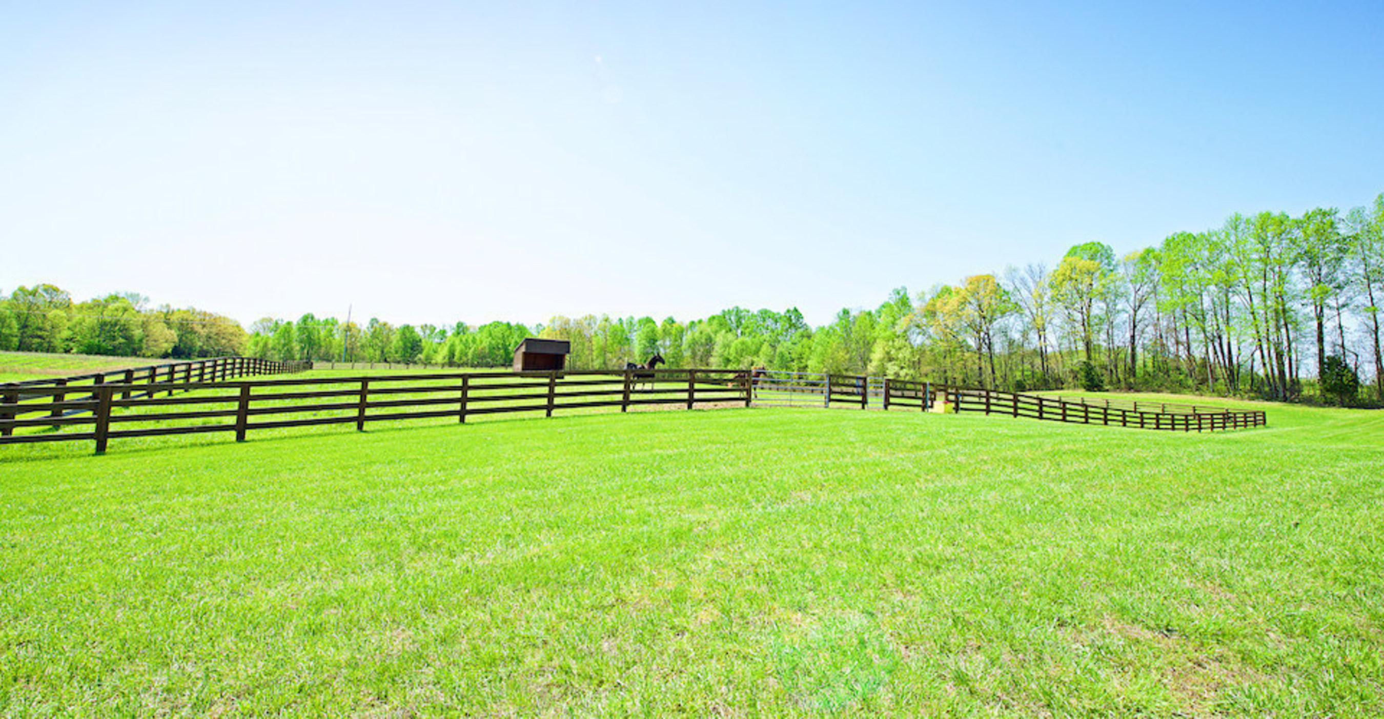 Supreme Auctions Offers Kentucky Horse Property At Absolute No Reserve Auction - A Rare Opportunity, Selling June 6