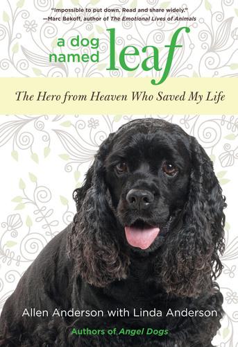 """A Dog Named Leaf"" Book Cover.  (PRNewsFoto/Allen and Linda Anderson)"