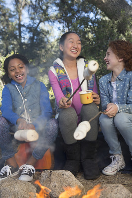 In celebration of 100 years of Girl Scouts selling cookies, there are two new Girl Scout S'mores(TM) cookies available in January 2017.