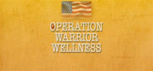 Operation Warrior Wellness, a David Lynch Foundation-sponsored outreach program, brings the Transcendental Meditation technique to U.S. military personnel, veterans and their families.  (PRNewsFoto/Maharishi Foundation USA)