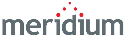 Meridium Logo (PRNewsFoto/Meridium Inc.)