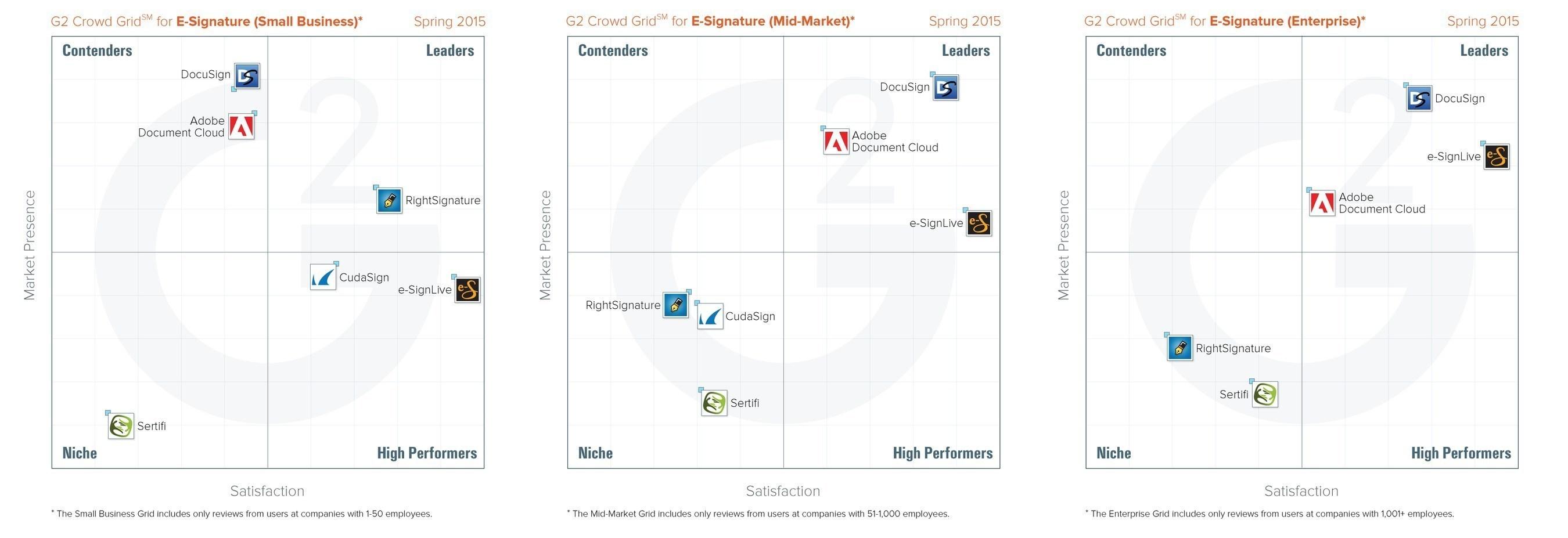 Segmented E-Signature Grids for Small, Midsize and Enterprise Users