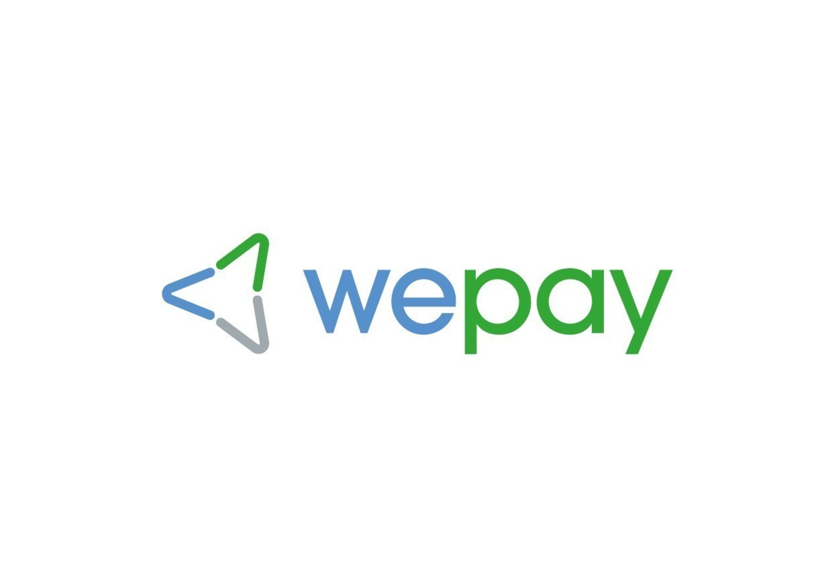 Payments Partner to the Platform Economy