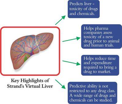Strand Receives US Patent for Virtual Liver, Releases New Human Liver Model (PRNewsFoto/Strand Life Sciences)
