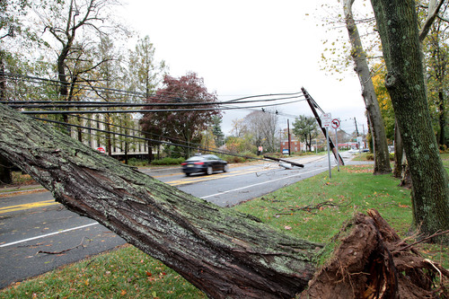 Debris, including trees, branches, utility wires and poles, made travel difficult on Rt. 124 in Morristown, NJ.  ...